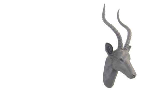 tête de gazelle